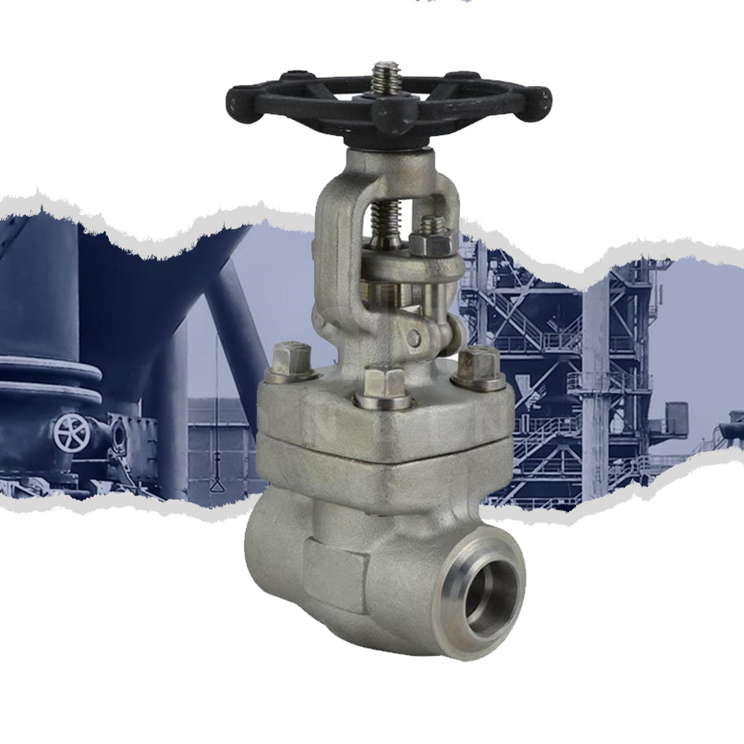 Class 800 Forged Stainless Steel 316L Globe Valve